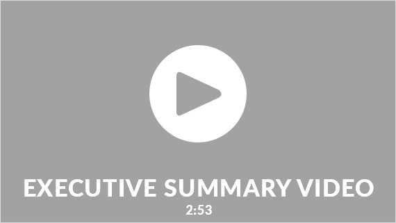 Executive Summary Video